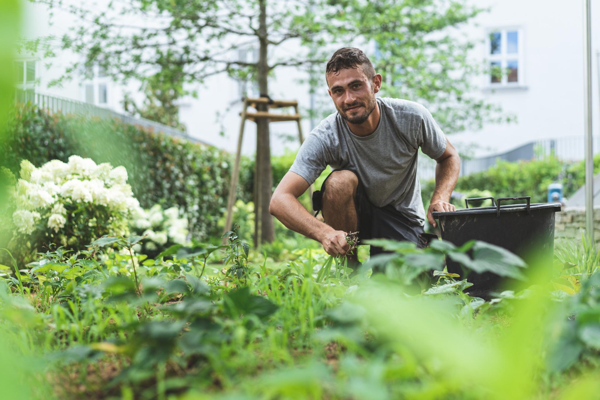 Team Baumgartner - Gartengestaltung